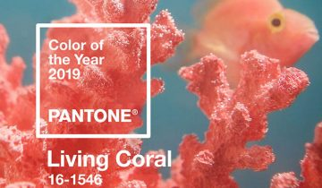PANTONE'S COLOR OF THE YEAR FOR 2019