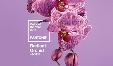 PANTONE ANNOUNCES RADIANT ORCHID AS 2014 COLOR OF THE YEAR
